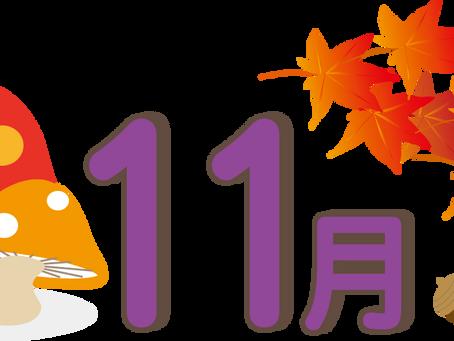 11月のダンスタイム予定表