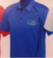 Polo CYBER Blue StdLogo2.png