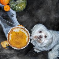 Halloween Pumpkin Pie Recipe