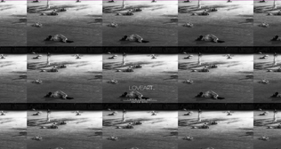 Screen Shot 2019-05-20 at 11.51.03 PM.pn
