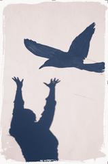 figure bird fly