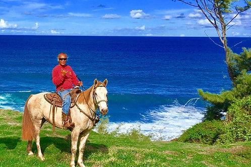 Waterfall & Coastline Views Horseback Riding - Maui Mountain Activities