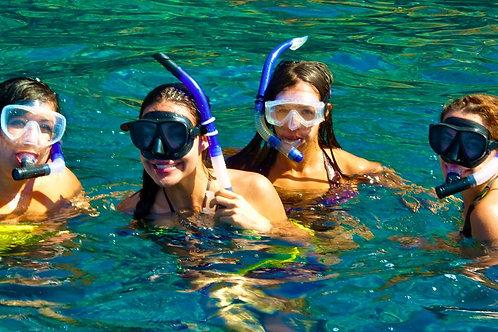 Molokini & Turtle Town Snorkel Tour - Maalaea Harbor - Agents