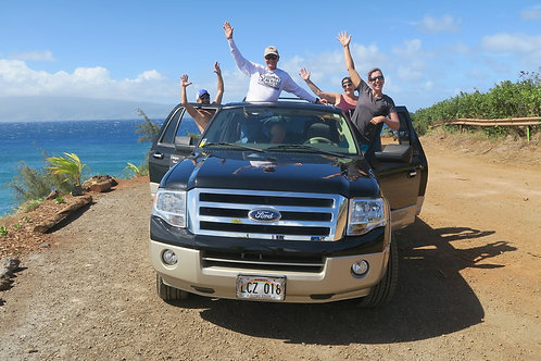 Best of Road to Hana, Chasing Waterfalls - Unique Maui Tours