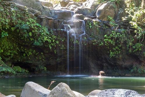 East Maui Waterfalls & Rainforest Hike - Agents