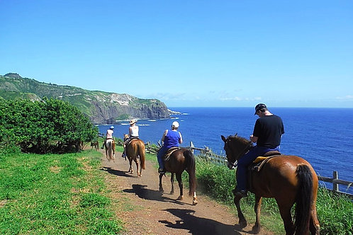 Horseback Riding with Views - Agents