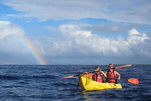 DELUXE Whale Watch Olowalu - Aloha Kayaks