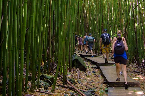 Hana Full-Day Waterfalls & Rainforest Hike - Agents