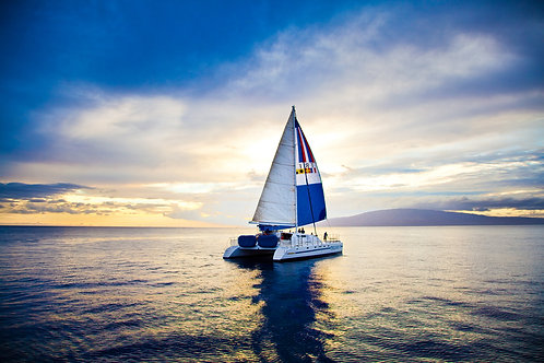 Sunset Sail Dinner Cruise with 4 Course Dinner