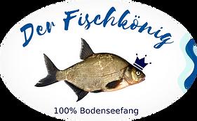Fisch%20Elipse%20homepage_klein_edited.p