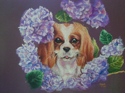 Portrait of a Puppy in Flowers