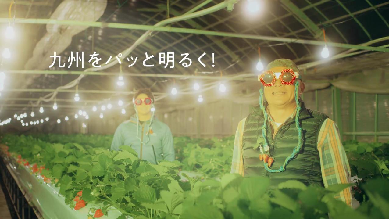 ナンワエナジー「でんきなナンワちゃん!いちご農家」篇 奈緒(ナンワちゃん)登場C
