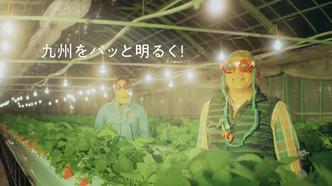 ナンワエナジー「でんきなナンワちゃん!いちご農家」篇|奈緒(ナンワちゃん)登場C