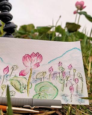 ruth-zannis-taiwans-most-beautiful-lotus