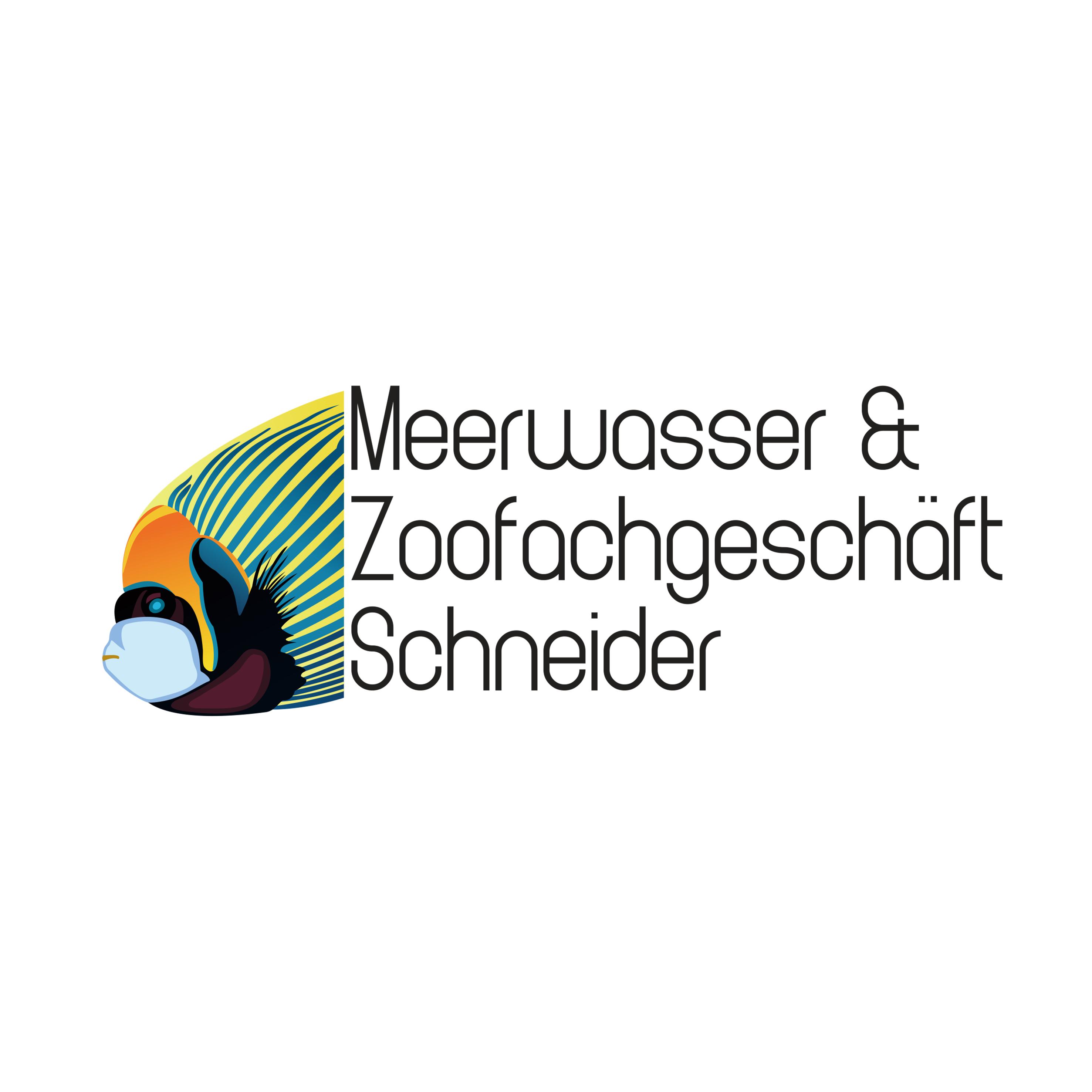 Meerwasser Logo Design