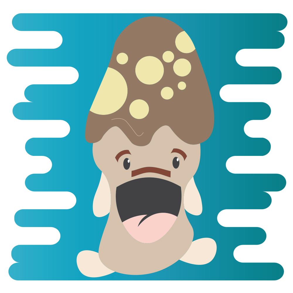 Dad_Mushroom
