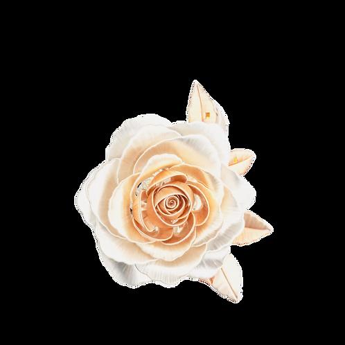 Giardino di Rose - Champagne