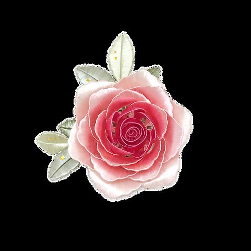 Giardino di Rose - Rosa