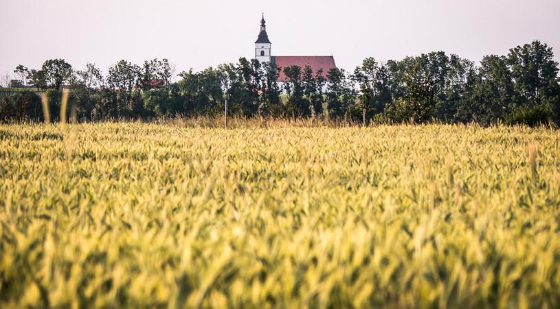 Dominanta Běhařovického kostela
