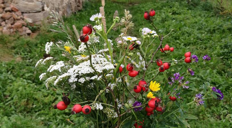Kytice, co zahrada dala