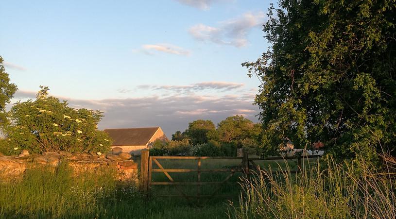 Pohled na zahradu ze zadní strany