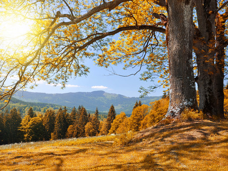 Best places in Czechia to visit in Autumn
