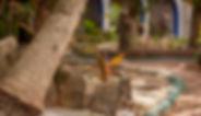 Hotel en Puerto Morelos