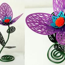 珊瑚花(三花)紫