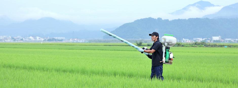 田園で肥料を蒔くina2015の若い男性社員
