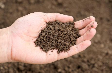 素手で土を持ち上げる