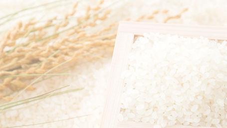 升に入ったお米と稲