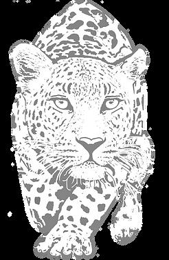 leopardicon.png