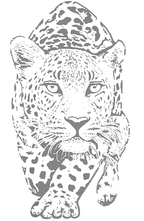 leopardicon.png