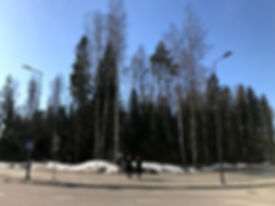 village_co_living_puu_kivisto_site.jpg