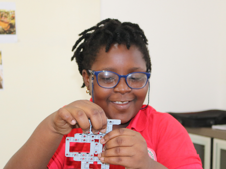 THE BENEFITS OF STEM EDUCATION