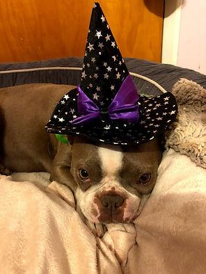 Halloween Brittney.jpg