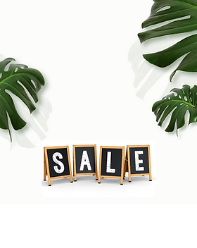 sale pic for site (1).png