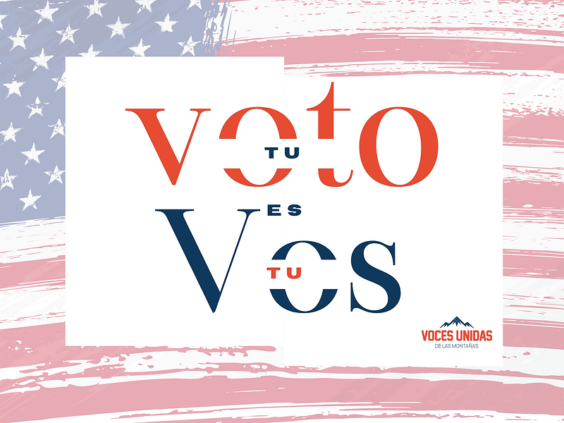 Copy of Copy of Your Vote your voice (1).png