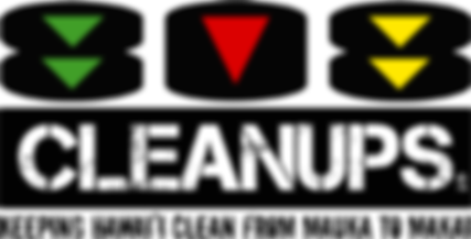808Cleanups Logo.png