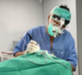 Chirurgie veterinaire clinique sterilisa