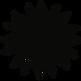 Sun 1_Website.png