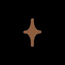 Brown_Star.png