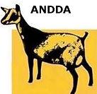ANDDA LOGO (2).jpg