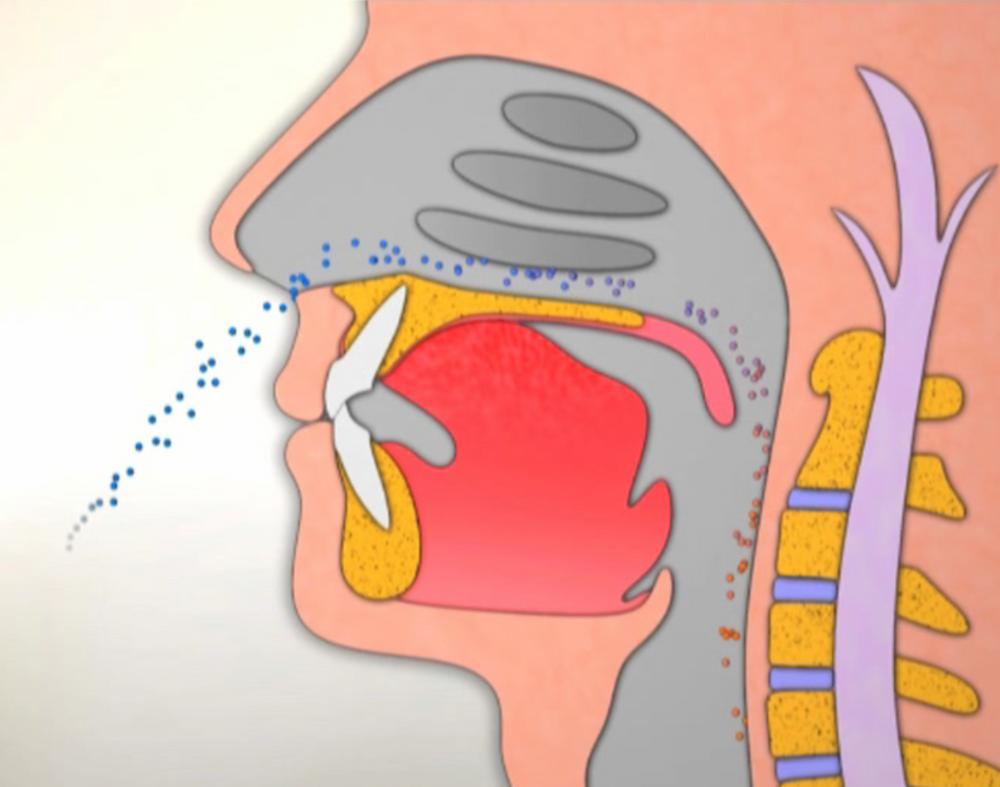 正確的鼻呼吸,能有效過濾過敏原