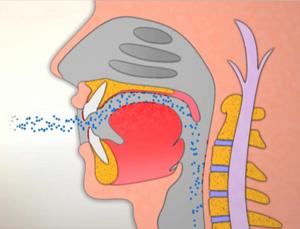 錯誤的口呼吸,過敏原會直接吸入肺部