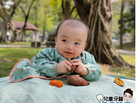 寶寶怎麼吃牙齒才健康?推薦您BLW飲食法