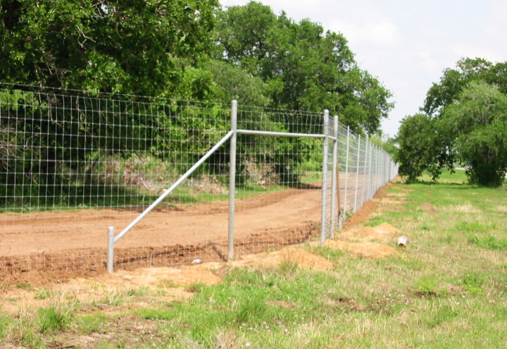 Exclosure Fence