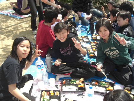 平成20年お花見の様子(松山城:2008年4月6日)
