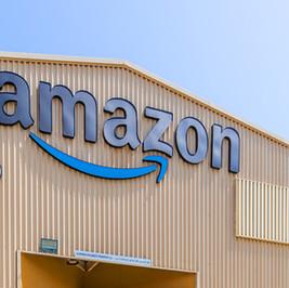 Amazon DIP