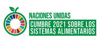 ONU_Cumbre_2021.jpg